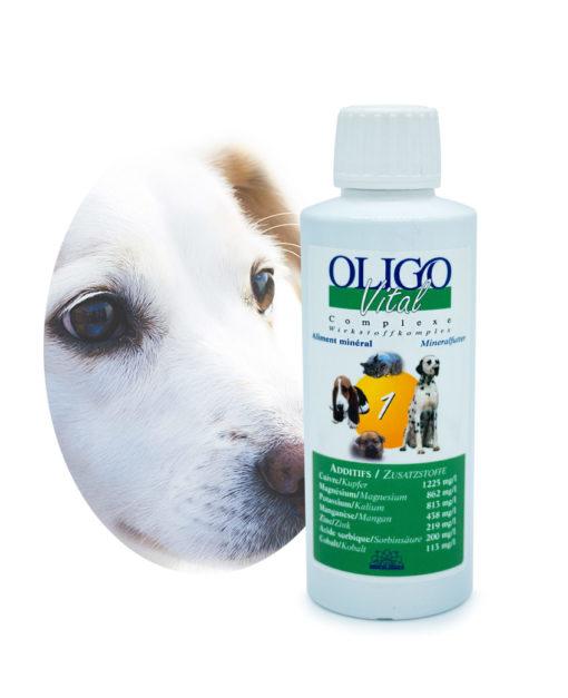 Préparation oligoéléments vétérinaires Oligovital1