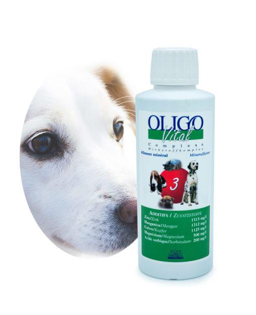 Préparation oligoéléments vétérinaires Oligovital3