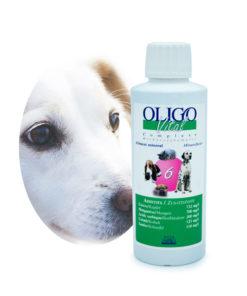 Préparation oligoéléments vétérinaires Oligovital6