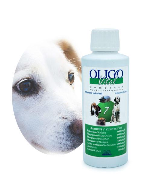 Préparation oligoéléments vétérinaires Oligovital7